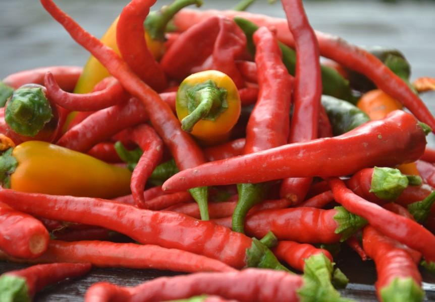 September is…..Picking, Pickling andPreserving.